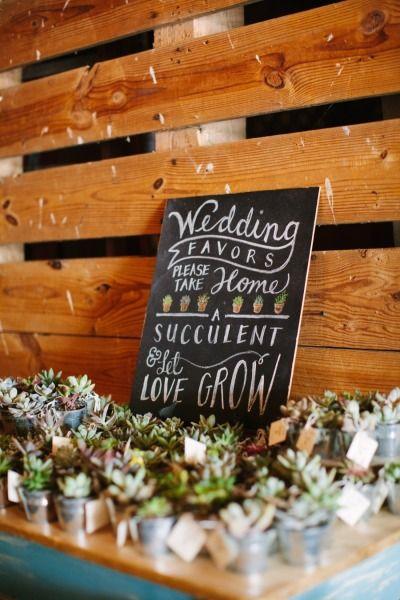 unique wedding favors, wedding favors, destination wedding, succulents