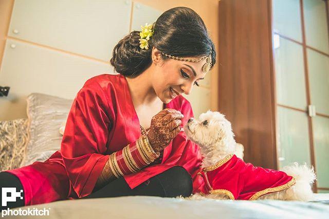 indian weddings, wedding photography, Canada, indian weddings in Canada, couple portrait, groom outfit, bridal outfit, indian bride, indian groom, bridal lehenga, Photo Kitch