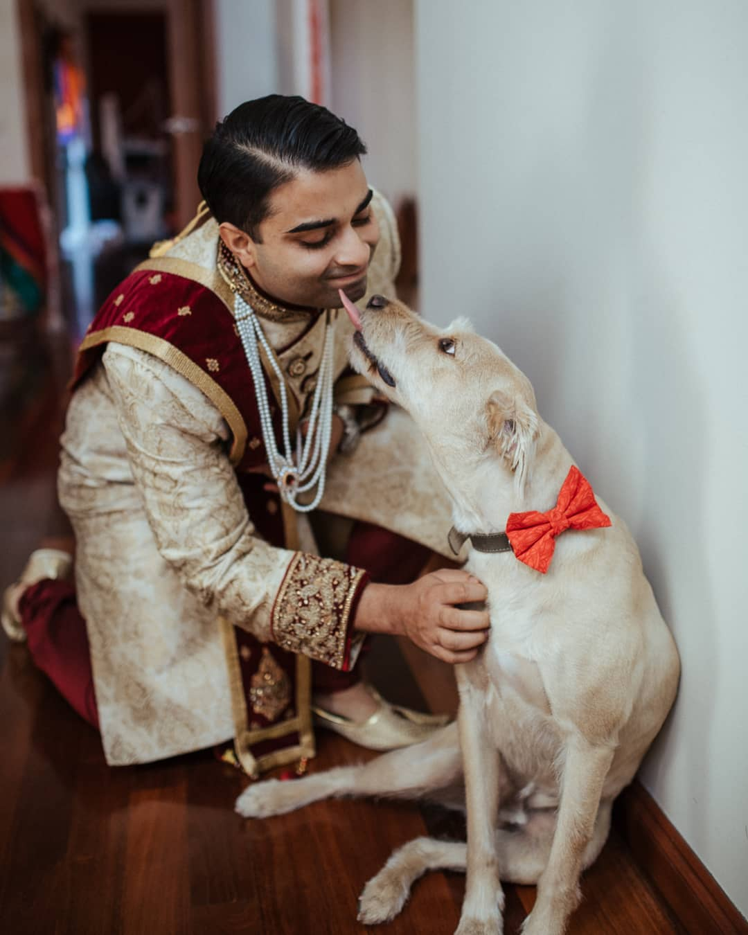 pets at wedding