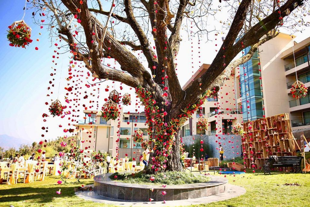 Tree Wedding Decorations Trending This Wedding Season