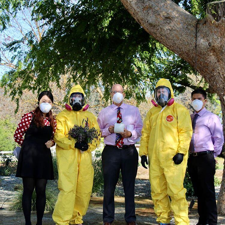 Weddings In Times Of Coronavirus