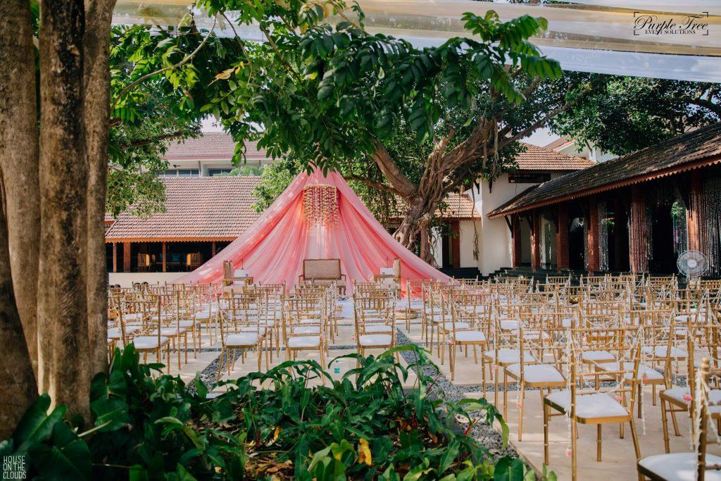 Purple Tree Event Solutions