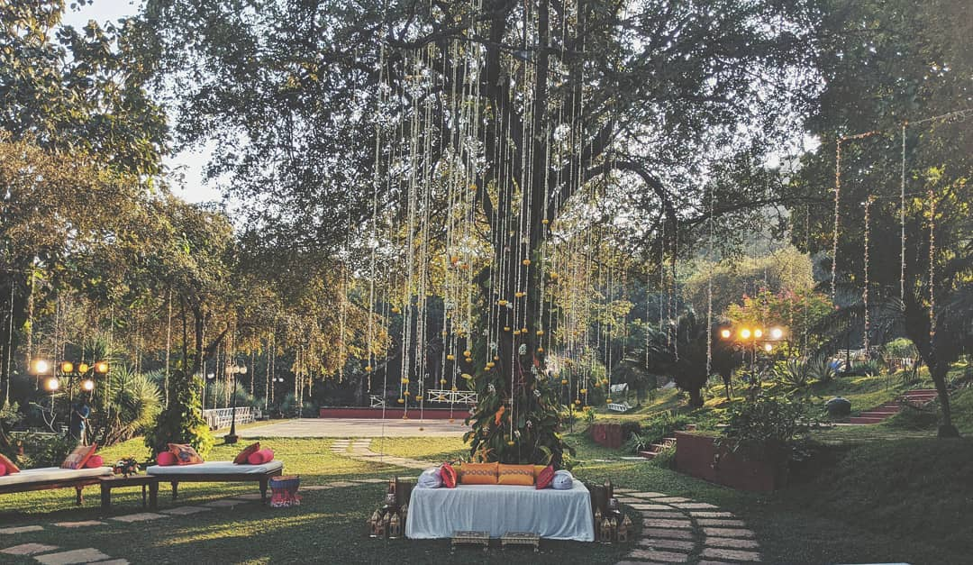 tree stage decor ideas