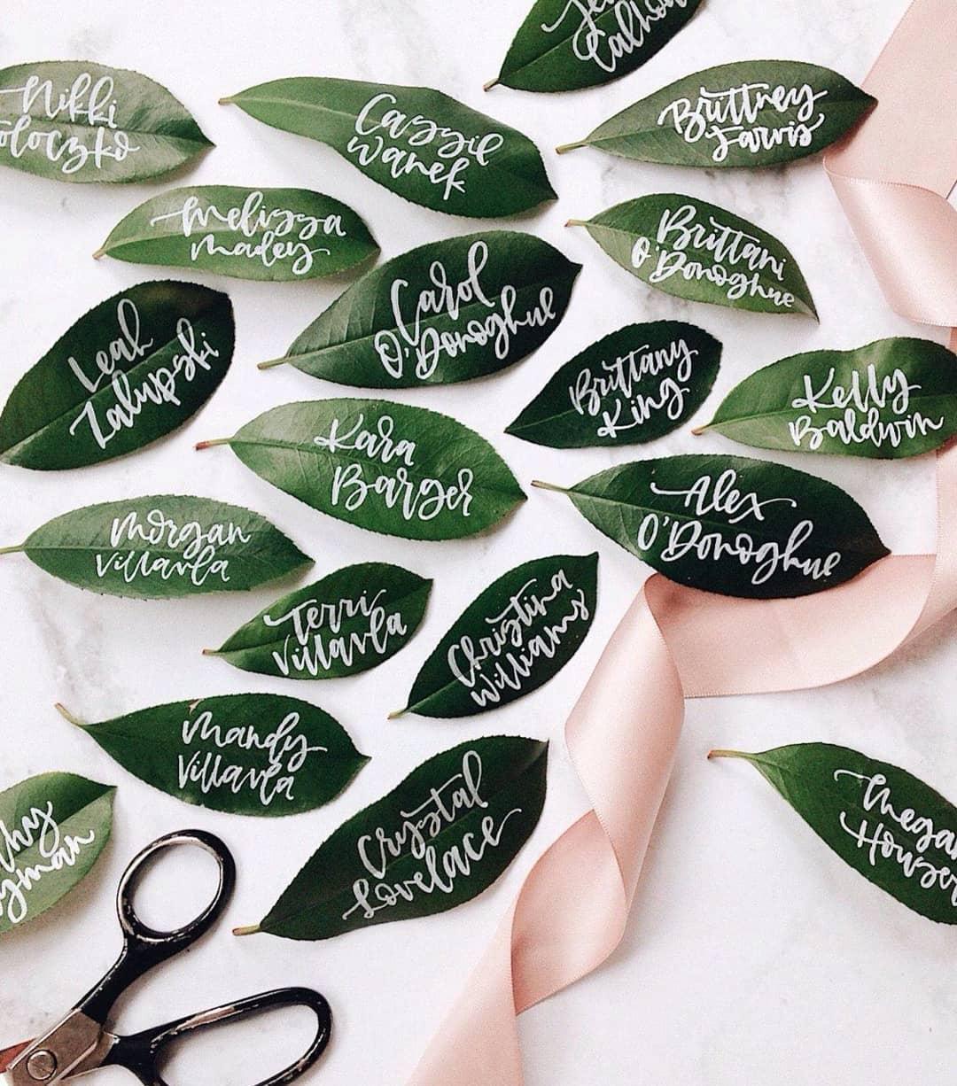 leaf name cards