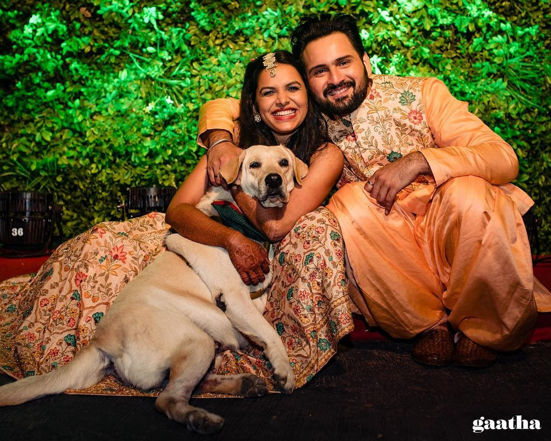 wedding pictures with pets
